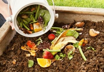 Já começou a segunda fase do projeto de recolha de resíduos biodegradáveis